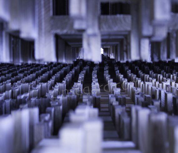 Matrix #1 Art Photography by Nicolas Ségard